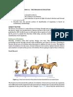 CH5_Lesson 16 The Process of Evolution.pdf