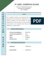 cv-DANDY JOEL CORDOVA ELIAS.pdf