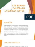Estudio de Biomasa Para La Caldera (1)