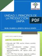 UNIDAD 1 PRINCIPIOS DE LA PRODUCCIÓN MÁS LIMPIA.pdf