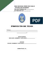 Protocolo-PROYECTO_DE_TESIS-EPG-UNPRG-2019[1]