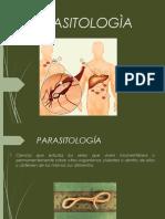parasitologiapowerpoint-160725192540
