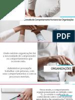 Conceito de Comportamento Humano nas  Organizações.pdf