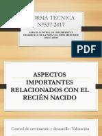 NORMA TÉCNICA N°537-2017 (1)