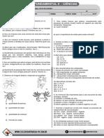 7ano_animais_invertebrados.pdf