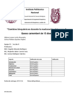 331342717-Cambios-Bioquimicos-Durante-La-Maduracion-Del-Queso.docx