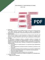 Fibroadenoma Mamario o Tumor Benigno de Mama