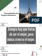 Copia de Unidad III Generalidades de Los Organos Dentales