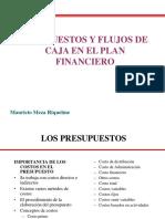 Presupuesto y Flujos de Caja 2019