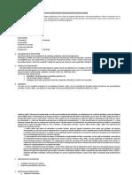 Formato Plan de Intervención FA Infantojuvenil Formato UCSH 2019