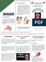 TRIPTICO-aparato digestivo.docx