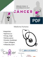 ahesion celular y el cancer