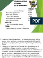 bioquimica piriminas-PURINAS