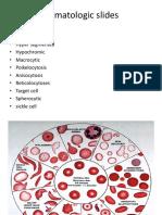 Slides Hematologic