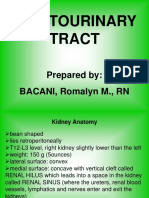 GenitoUrinary_Tract_presentation.ppt