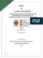 Report format (1).docx