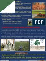 Nociones de Agricultural 2019 (1 Sem).Pptx