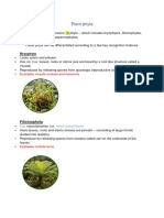 Plant phyla.docx