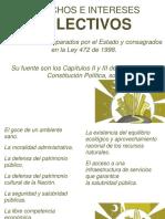 Acciones Colectivas Populares y Mecanismos de Participación