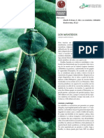 mantidos.pdf