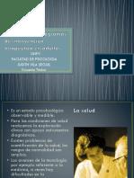 Estrategias y Programas de Intervención Terapéutica en Adultos