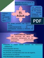 METABOLISMO DEL AGUA (1).pptx