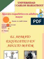 10.-APARATO ESQUELÉTICO