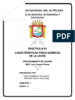 LECHES INFORME 1.docx