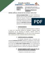 Contestacion de Demanda  SSSS.docx