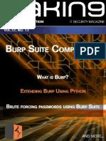BurpSuite Compendium Preview
