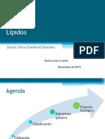 lipidosNov10
