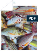 42 Field Guide to Coastal Fishes Palawan