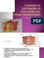14.-Cuidados de Enfermería en Afecciones Del Sistema Tegumentario