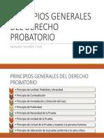 3 Principios Generales Del Derecho Probatorio