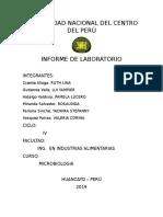 informe-microbiologia-02