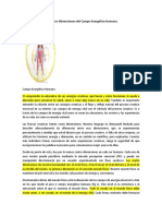 Las_Cuatro_Dimensiones_del_Campo_Energet.docx