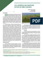 Big Data na Agropecuária