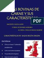Economia Agraria -Vacunos de Carne
