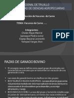 VACUNOS DE CARNE.pptx