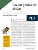 Jorda y Peinado 2009 Regulacion genica abejas.pdf