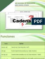 Cadenas_2019_2