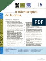 vdocuments.mx_examen-general-de-orina-567889bd793c5.pdf