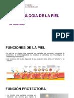 Fisiologia de La Piel y Lesiones Elementalesi