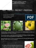 Bsc Thesis Project Proposal- starch