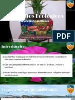 Ppt Ladrillos Ecologicos (1)