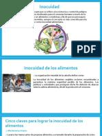 DIAPOS INOCUIDAD LOURDES.pptx