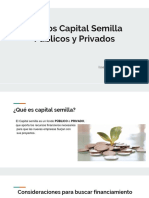 capital-semilla.pptx