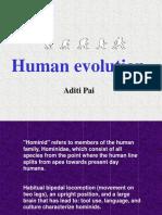 Human Evol