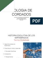 Evolucion 2.pdf