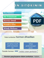 Hormon Sitokinin